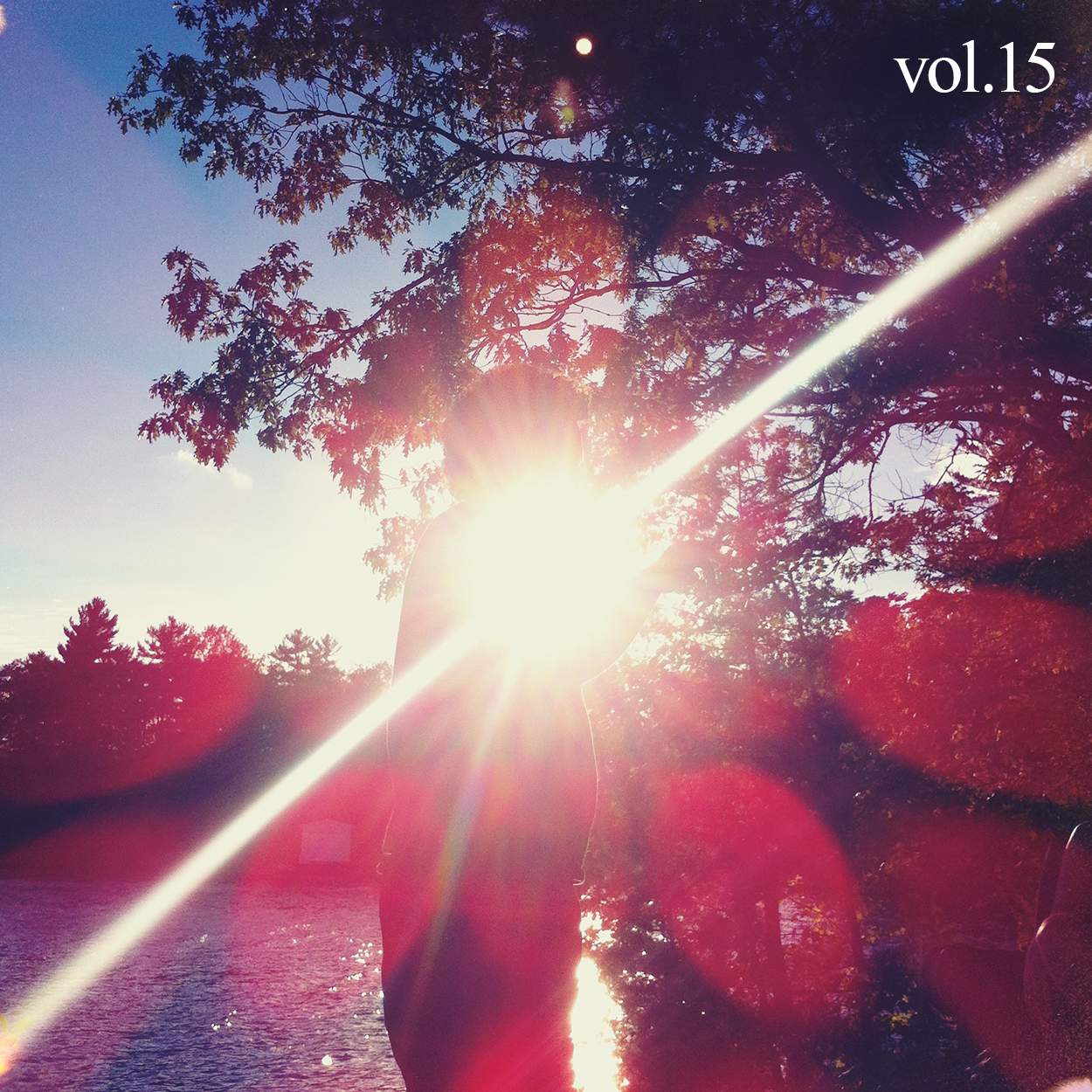 Cover for Cottage Country Volume 15 Rock Mixtape