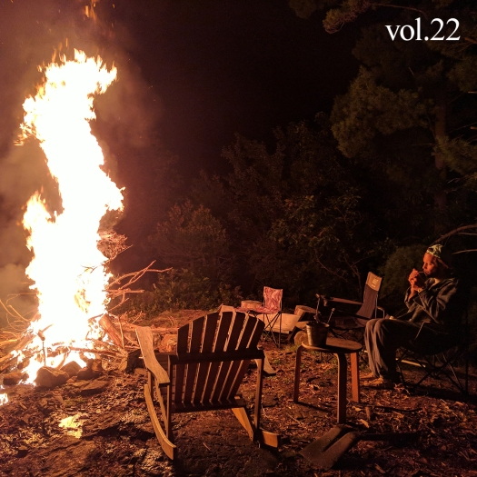 Cottage Country Volume 22 cover