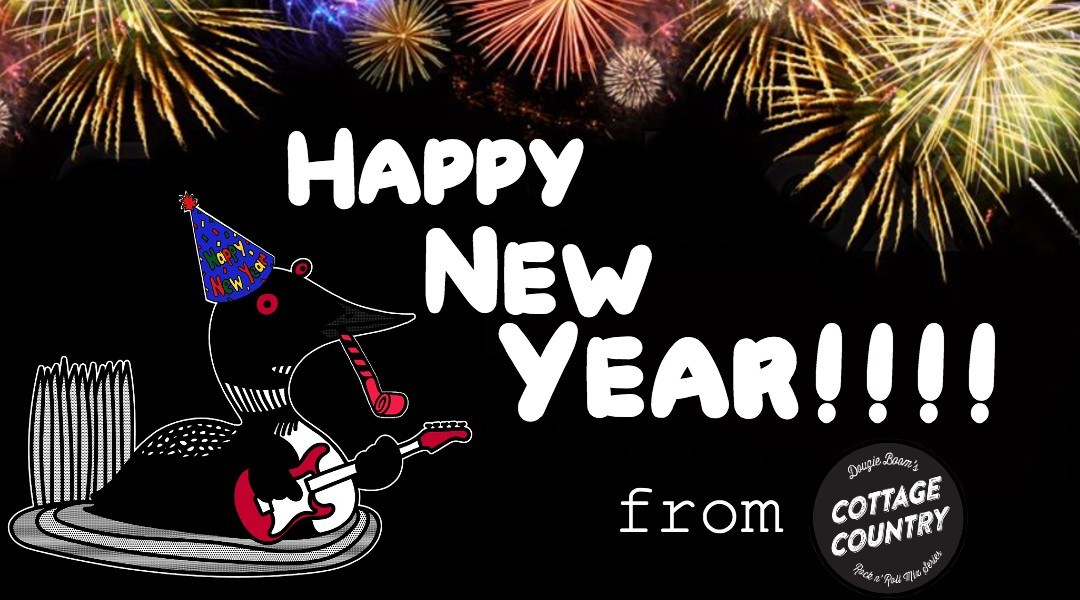 Cartoon loon mascot with New Year's hat and blowout horn with fireworks in the background