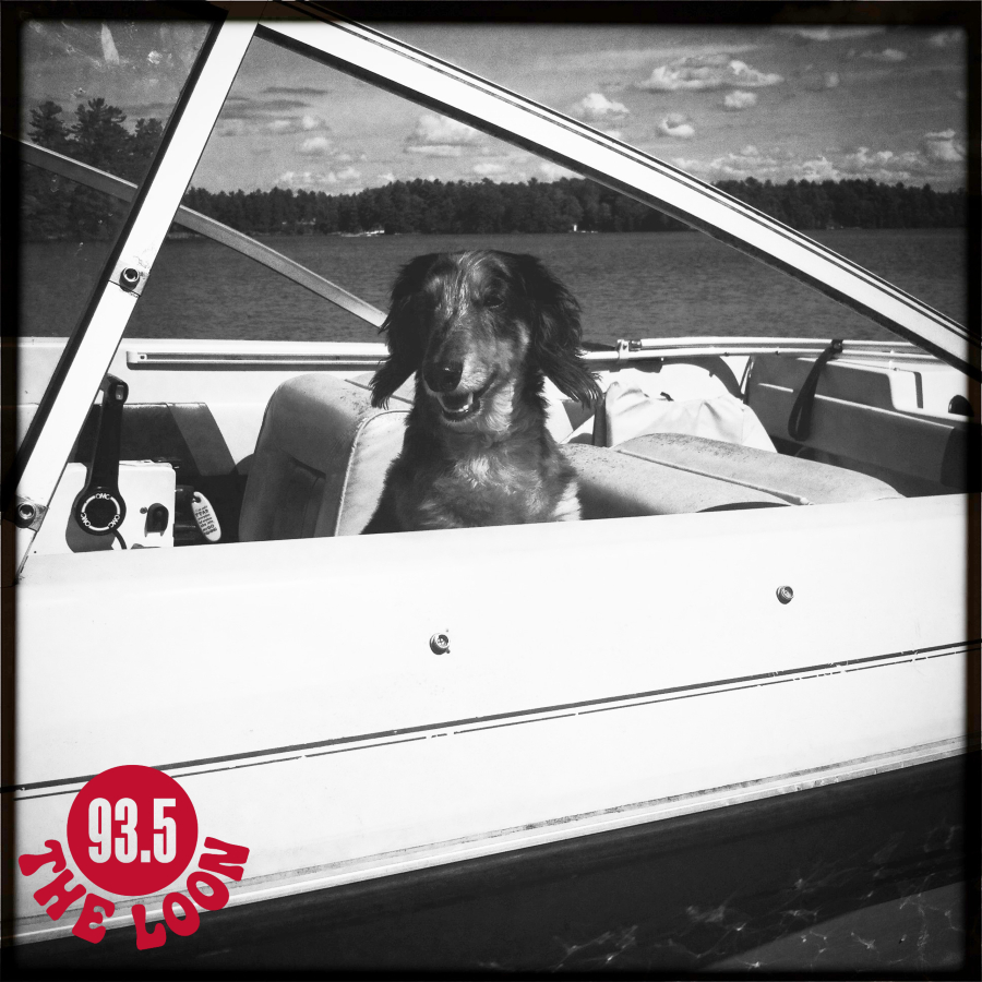 A dachshund dog sits in driver's seat of a boat smiling with eyes closed