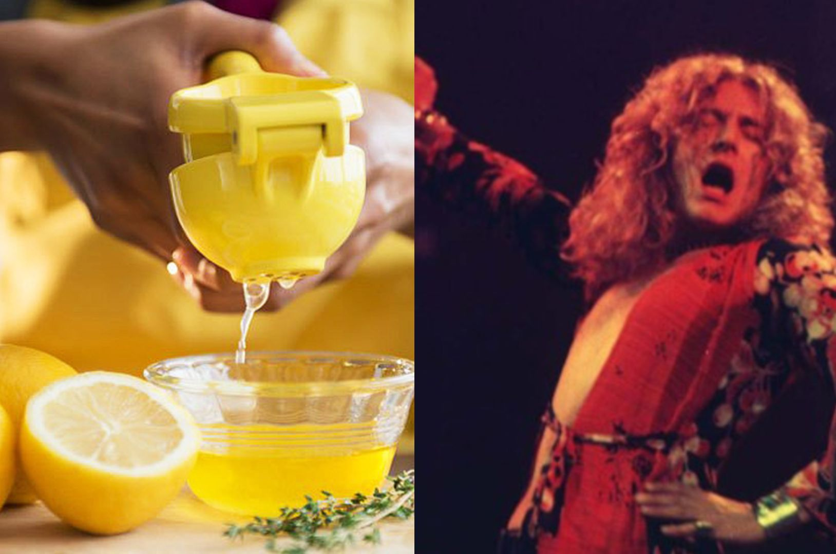 Hands squeezing juice from a lemon press into a bowl, opposite Robert Plant on stage with his mouth agape and eyes closed
