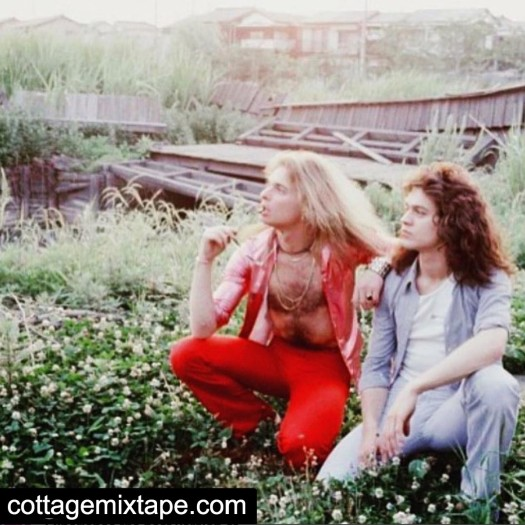 Eddie Van Halen and David Lee Roth sitting on the grass with flowers lakeside.